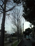 image/2010-12-14T11:19:18-1.jpg